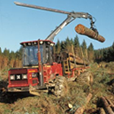 Timber felling
